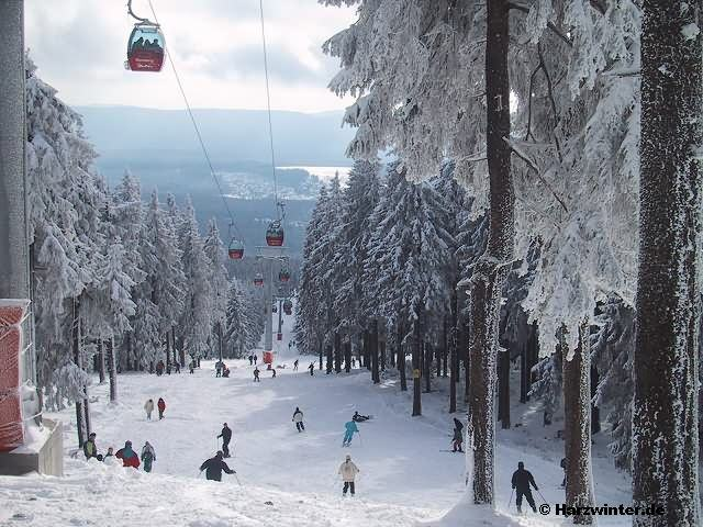 braunlage schneehöhe